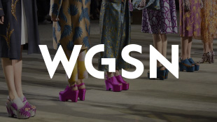 WGSN Case Study
